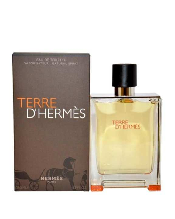 Terre D'Hermes for Men - 100 ml