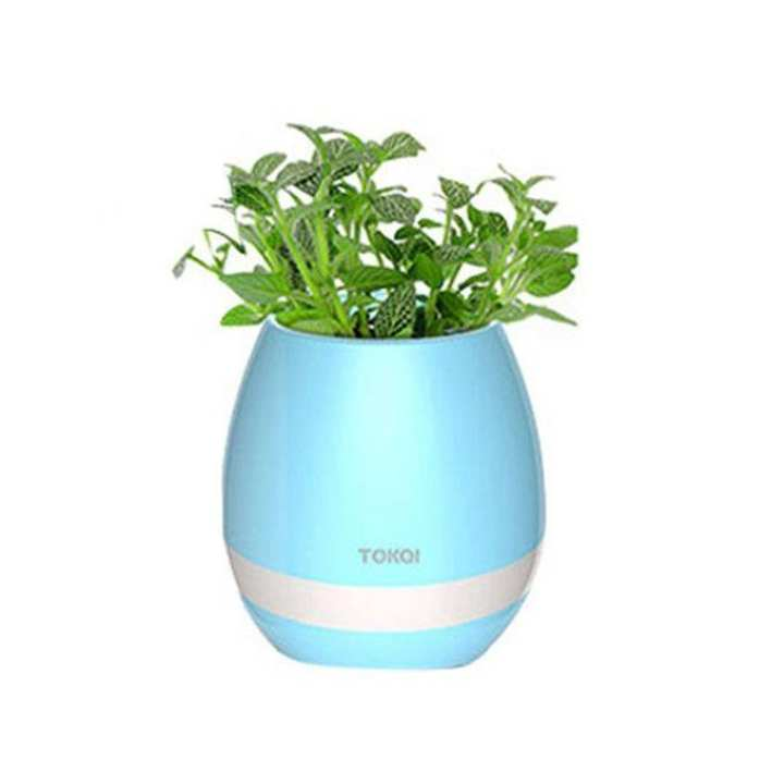 Festival Play Piano Gift Flower Pot - Blue