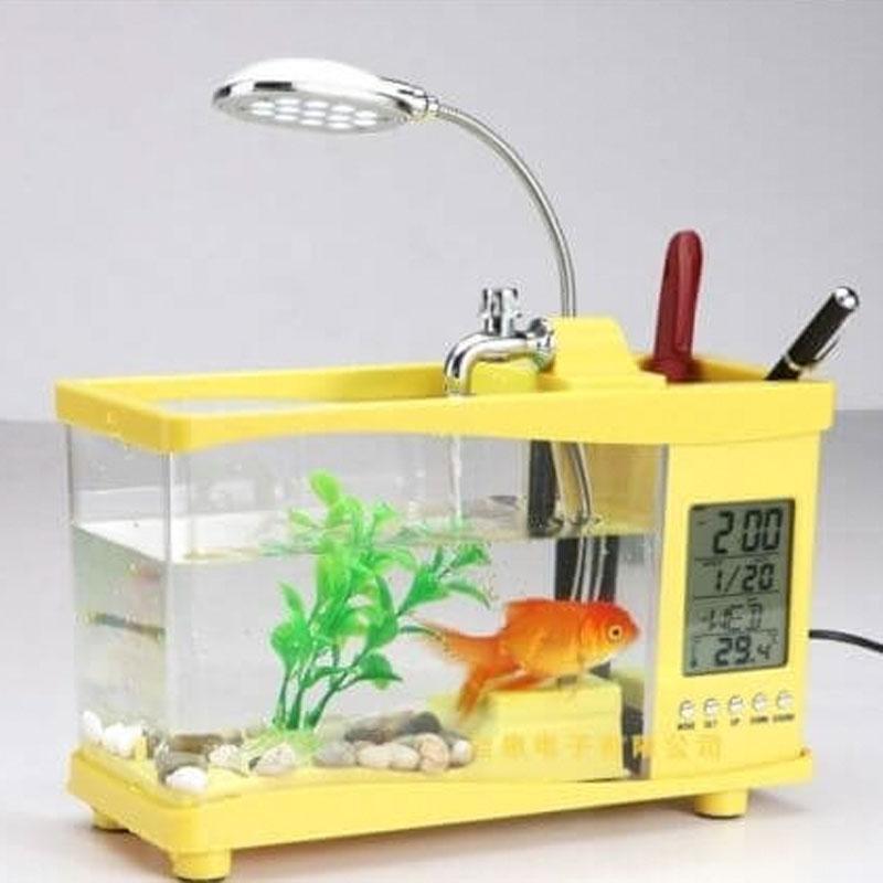 Buy City Super Shop Aquariums At Best Prices Online In Bangladesh