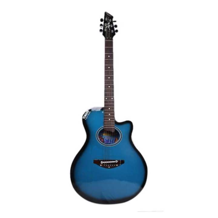 C.M-2 Acoustic Guitar - Blue