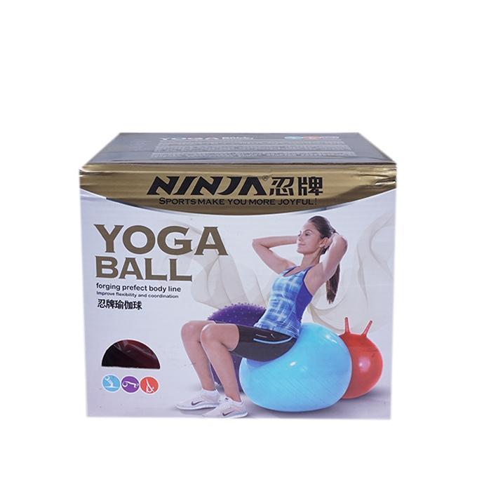 Yoga Ball - Multi Color
