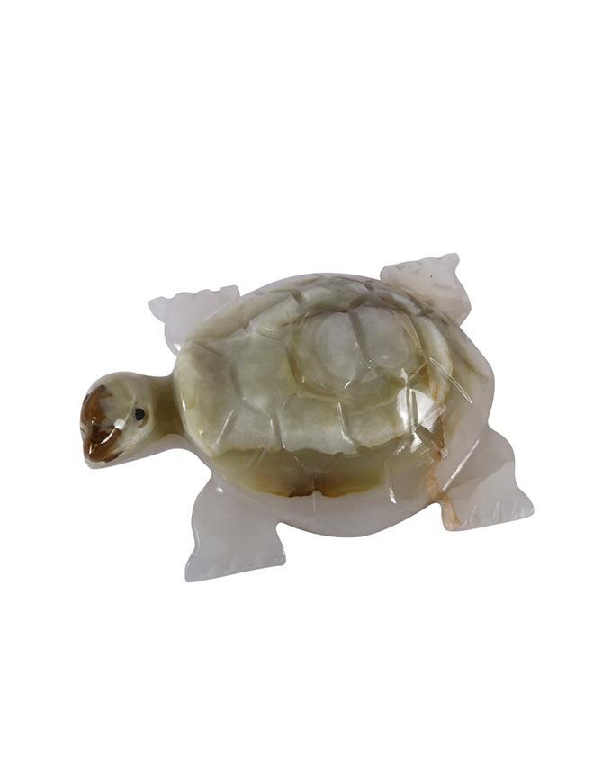 Marble Tortoise - White
