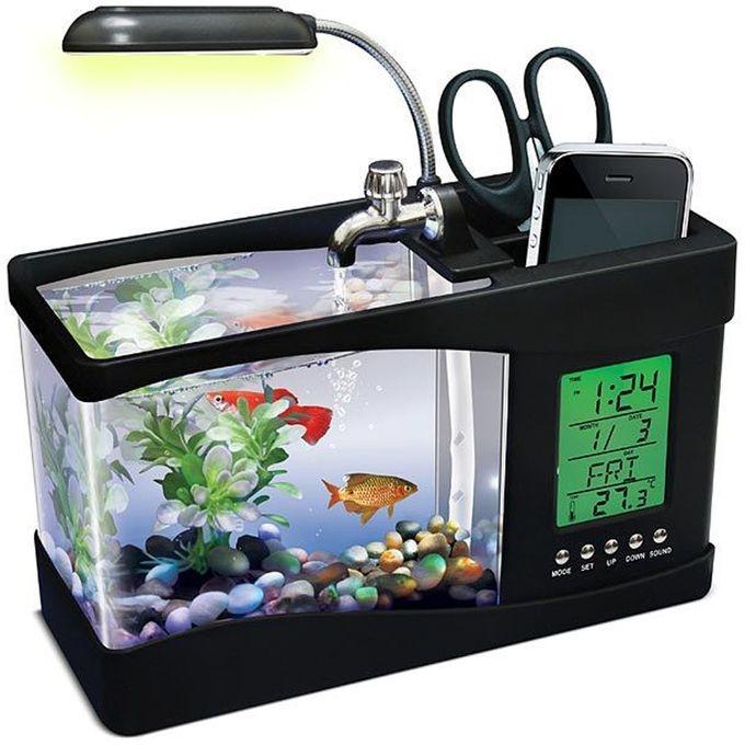 Aquarium Price In Bangladesh Buy Mini Aquariums Daraz Com Bd