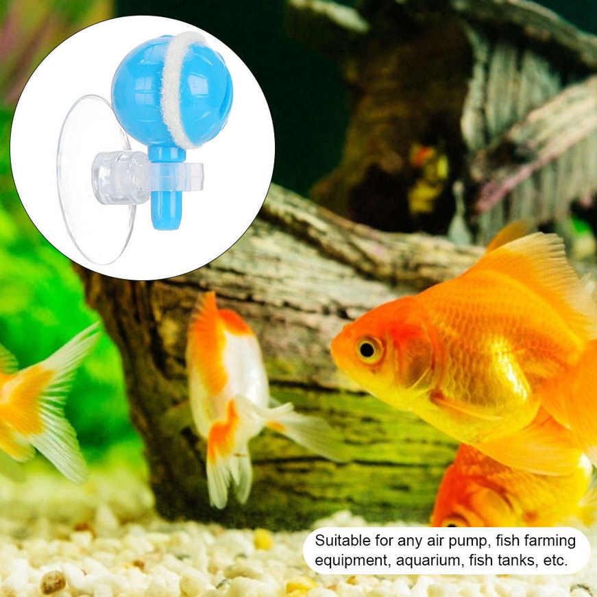 Bubble Stones 5pcs Mini Aquarium Fish Tanks Oxygenation Pump Generator Accessory Buy Online At Best Prices In Bangladesh Daraz Com Bd